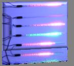 LED-SF-24V-0,5М-5