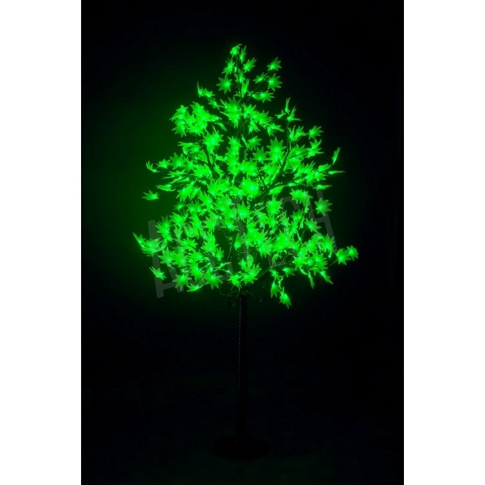 Клен зеленый
