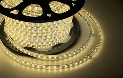 Дюралайт LED, свечение с динамикой (3W) - теплый белый, 24 LED/м, бухта 100м