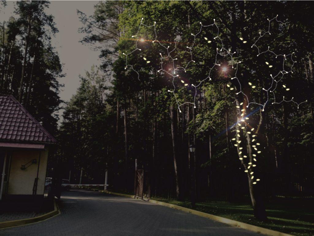 Световые гирлянды на деревьях